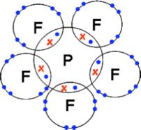 pf5-dx
