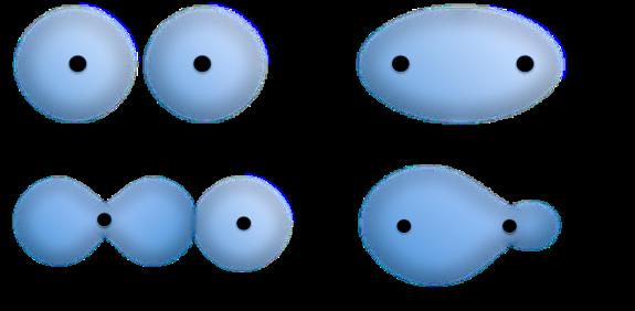 sigma formation